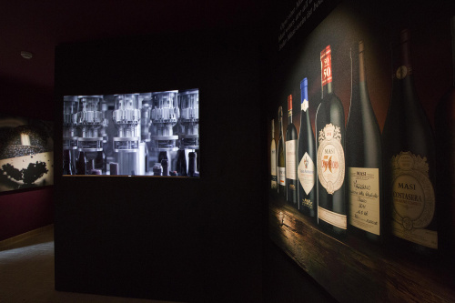 Wine Discovery Museum Masi